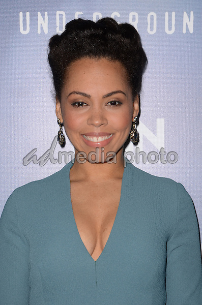 "08 January  - Pasadena, Ca - Amirah Vann. Arrivals for the WGN America Winter TCA Tour ""Underground"" held at The Langham Hotel. Photo Credit: Birdie Thompson/AdMedia"