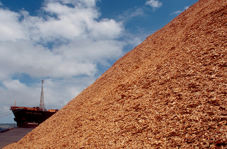"Coos Bay; Oregon; Pulp Export for Asian market, Huge piles of ""chips"" second growth timber chipped into pulp for paper the bow of the bulk carrier or ""chip ship"" built to transport the forest product to the Far East,"