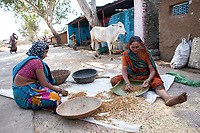 A mother and daughter sort wheat in Mandu, India.