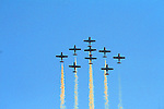 AIRSHOWS and  MILITARY DISPLAYS.  CANADIAN SNOWBIRDS AND OTHERS