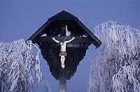 Europe/Allemagne/Forêt Noire/Env de Hinterzarten : Calcaire en hiver