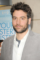 Josh Radnor at the Los Angeles premiere of 'Your Sister's Sister' at ArcLight Cinemas on June 11, 2012 in Hollywood, California. &copy;&nbsp;mpi35/MediaPunch Inc. NORTEPHOTO.COM<br />