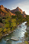 The Watchman and the Virgin River in autumn at Zion National Park, Utah
