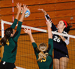 SPEARFISH, SD - NOVEMBER 1, 2013:  Kaylee Pierce #26 of Colorado Christian hits toward blockers Caitlin Templeton #4 and Shelby Mayer #13 of Black Hills State during their game at the Donald E. Young Center in Spearfish, S.D. (Photo by Dick Carlson/Inertia)
