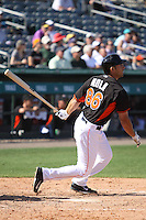 Austin Nola (86) of the Miami Marlins at bat during a Grapefruit League Spring Training game at the Roger Dean Complex on March 4, 2014 in Jupiter, Florida. Miami defeated Minnesota 3-1. (Stacy Jo Grant/Four Seam Images)