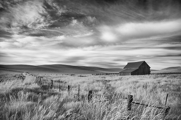 Black and white infrared image of barn and fence in the Palouse region of Washington