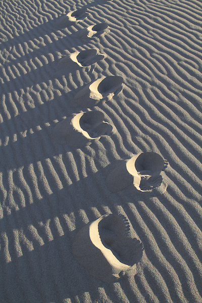 Footprints in Great Sand Dunes National Park, Colorado. .  John leads hiking and photo tours throughout Colorado. John offers private photo trips to Great Sand Dunes National Park and all of Colorado. All year long.