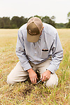 April 20, 2016. Rowland, North Carolina. <br />  Bo Stone digs in the furrow left by his large planter to check the depth at which the corn seed is being planted.<br />  Bo Stone, age 44, runs a 2300 acre farm near the South Carolina border. After 5 generations of tobacco farming, Stone helped to move his family farm over to corn, wheat, soybeans, and strawberries 7 years ago. <br />  While his corn crop is entirely made up of stacked genetically modified strains of corn, Stone says he chose the varieties primarily for their yield characteristics, but having the ability to utilize their herbicide tolerant traits if a weed gets out of control is &quot;another tool in my toolbox&quot;.