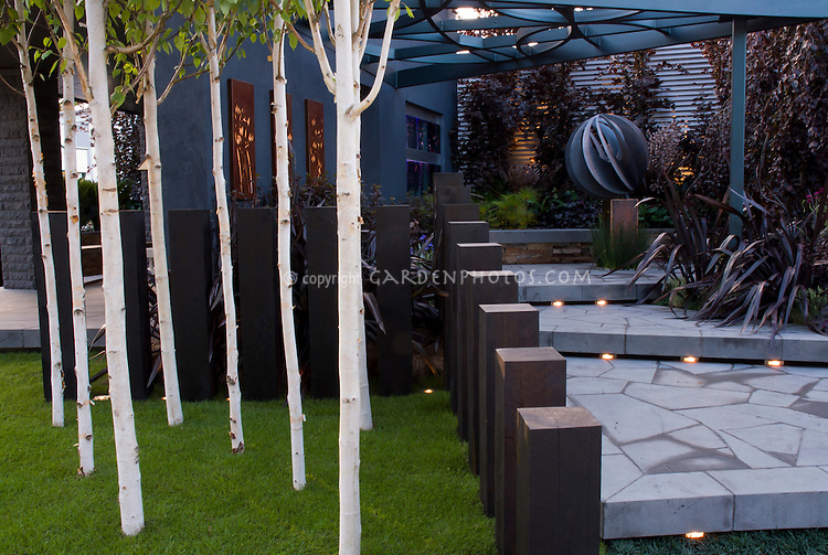 Beautiful blue tones patio steps with built-in lighting, birch trees, landscaping, arbor, garden ornament in evening, Betula utilis jaquemontii