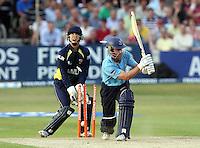 Cricket 2010-06