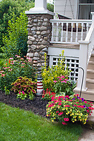 Front porch of house with hanging swing, container garden pot of calibrachoa annual flowers, verbena, coleus, Solenostemon, annuals and perennials in mulched black foundation plantings, coleus, salvia, Echinacea, hydrangea, lawn grass, shrubs, etc., nautical theme with lighthouse ornament, attracting pollinators to small garden, blooms and foliage plants, hanging basket