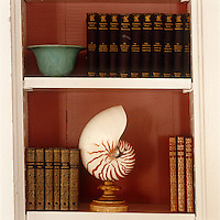 Detail of a mounted shell sat beside leather bound books on a living room shelf.