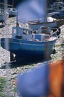 Europe/France/Bretagne/29/Finistère/Roscoff : Le port à marée basse
