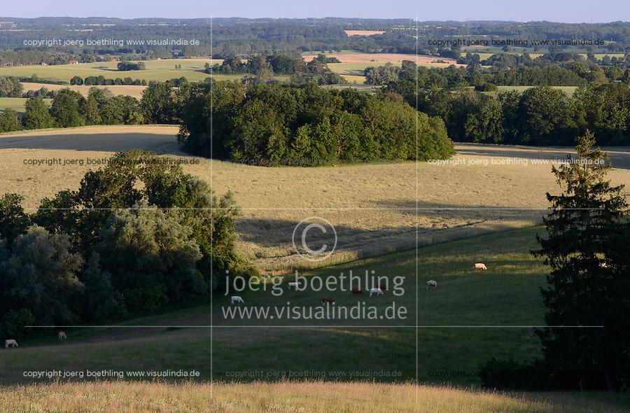GERMANY, Teterow, forest and grazing land / iWeide und Laubwald, Landschaftsschutzgebiet Saechsische Schweiz