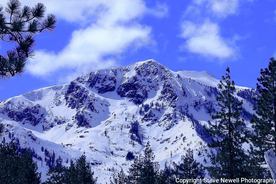 """Winter Wonderland"" Color Mt. Tallac, Lake Tahoe, CA. Size Does Matter!! You can see ski tracks in every patch of snow visible on the entire mountain. Extreme skiers descend the face of Mt Tallac via ""the Cross"", including the smaller shoots and Cathedral bowl on the left. An avalanche fracture line can be seen below the cross in the lower section of the mountain.  There are tracks in the north bowl and in all the trees to the right. Mt. Tallac is a Winter Wonderland to the local mountaineers. I have climbed and skied Tallac many times over the last 29 years. It is truly a spiritual experience to expend the energy to climb the 3000 ft vertical gain and then have the time of your life getting back to your car. No chairlifts just the mountain at it's finest.  The clarity and detail of the ski tracks and mountain make this a Classic Lake Tahoe Photograph!!"
