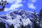 """""""Winter Wonderland"""" Color Mt. Tallac, Lake Tahoe, CA. Size Does Matter!! You can see ski tracks in every patch of snow visible on the entire mountain. Extreme skiers descend the face of Mt Tallac via """"the Cross"""", including the smaller shoots and Cathedral bowl on the left. An avalanche fracture line can be seen below the cross in the lower section of the mountain.  There are tracks in the north bowl and in all the trees to the right. Mt. Tallac is a Winter Wonderland to the local mountaineers. I have climbed and skied Tallac many times over the last 29 years. It is truly a spiritual experience to expend the energy to climb the 3000 ft vertical gain and then have the time of your life getting back to your car. No chairlifts just the mountain at it's finest.  The clarity and detail of the ski tracks and mountain make this a Classic Lake Tahoe Photograph!!"""