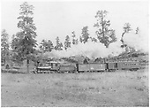 Fireman's-side view of D&amp;RG #42 with a 2-car mixed train, probably on the Pagosa Springs Branch.  This engine was renumbered from #25 in 1895.<br /> D&amp;RG  Pagosa Springs Branch, CO