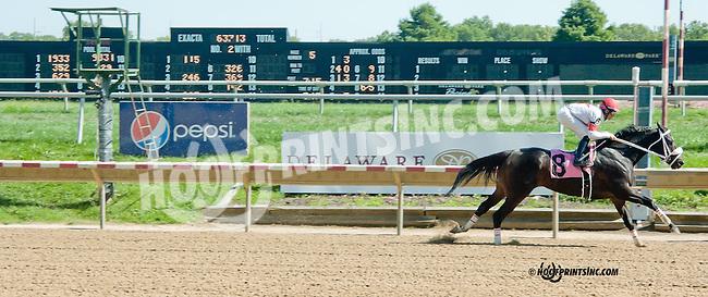 Banner Elk Lady winning at Delaware Park on 9/4/13