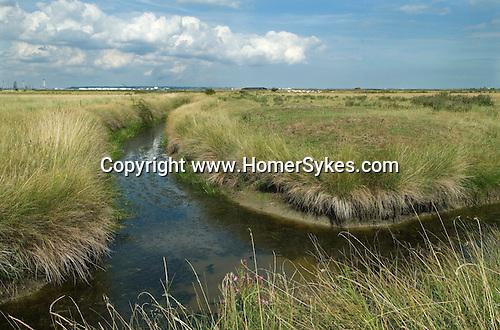 Cliffe marsh, Isle of Grain, Hoo Peninsular, Kent, UK. Proposed possible site of new London airport.