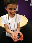 Robby Newton, 8, holds a Madagascar hissing cockroaches during a presentation by Gabe Kerschner, with Conservation Ambassadors, at the Boys &amp; Girls Club of Western Nevada in Carson City, Nev., on Tuesday, June 12, 2018 as part of the Carson City Library's Summer Learning Challenge. <br /> Photo by Cathleen Allison/Nevada Momentum