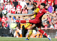 Wolverhampton Wanderers' Willy Boly passes despite the attentions of Liverpool's Alex Oxlade-Chamberlain<br /> <br /> Photographer Rich Linley/CameraSport<br /> <br /> The Premier League - Liverpool v Wolverhampton Wanderers - Sunday 12th May 2019 - Anfield - Liverpool<br /> <br /> World Copyright © 2019 CameraSport. All rights reserved. 43 Linden Ave. Countesthorpe. Leicester. England. LE8 5PG - Tel: +44 (0) 116 277 4147 - admin@camerasport.com - www.camerasport.com