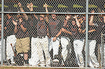 Jersey Shore team mates cheer for their team from the dugout.