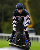 The Childrens Trust ridden by Hector Crouch goes down to the start of The Bathwick Tyres Conditions Stakes during Afternoon Racing at Salisbury Racecourse on 4th October 2017