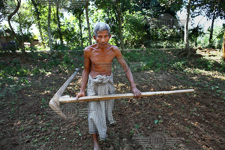 A Garo man carries a large hand plough, used to prepare fields for planting. The Garo (or Mandi, as they refer to themselves) are an ethnic minority thought to be of Tibeto-Burmese origin. Prior to British rule they were mostly anamists but missionary work led the majority to convert to Christianity. The Garo of the Madhupur forest have long been under the threat of eviction by the government and the forest that they gain much of their livelihood from is being rapidly destroyed by unregulated logging. ..