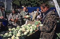 Europe/Pologne/Varsovie: Le marché de la halle Mirowska - Marchand de choux-fleurs