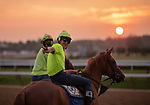 July 11, 2019 :  Horses exercise on the main track as Saratoga prepares to open the 2019 season at Saratoga Race Course in Saratoga Springs, New York. Alex Zhang/Eclipse Sportswire/CSM