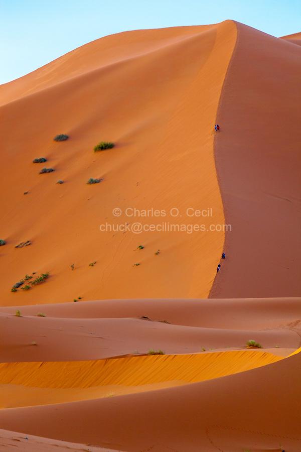 Merzouga, Morocco.  Tourists Descending Sand Dune Along Vertical Seam.