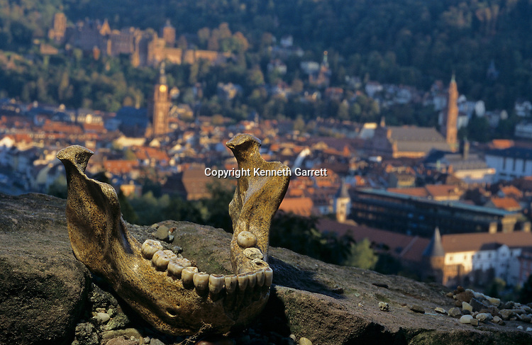 DOH, The First Europeans, 500,000 years old, Mauer Mandible, Paleoanthropologist Chris Stringer believes it to represent H.heidelbergensis, Heidelberg Germany in background.