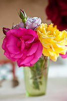 A bright pink and a yellow rose in a small glass vase