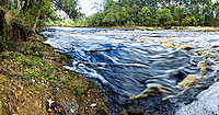 Big Shoals along the Suwannee River in North Florida. Panorama photo composed of five stitched images.