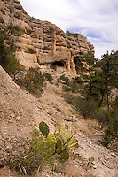 Gila Cliff Dwellings National Monument--cliff dwellings dating to the late 1200s. About 40 rooms constructed by Mogollon Indians in five caves about 175 ft above the floor of a side canyon near the west fork of the Gila River. Silver City New Mexico USA.