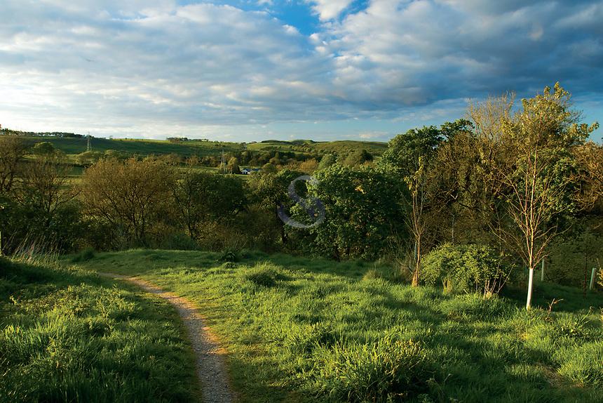 Midge Glen at dusk, Neilston, East Renfrewshire