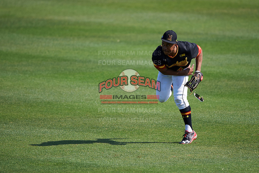 Maryland Terrapins right fielder Marty Costes (42) throws the ball in during a game against the Alabama State Hornets on February 19, 2017 at Spectrum Field in Clearwater, Florida.  Maryland defeated Alabama State 9-7.  (Mike Janes/Four Seam Images)