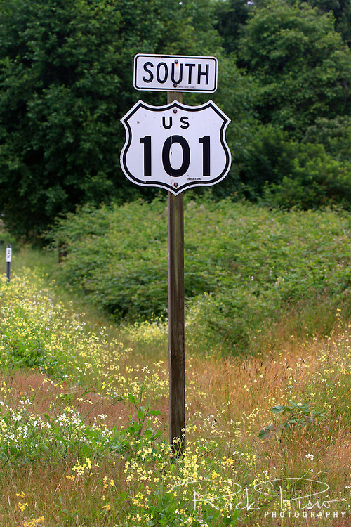 Highway marker for US 101 stands among the wildflowers near Humboldt Lagoons State Park near the town of Trinidad on California's Northern coast. Photographed 07/08