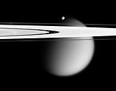 In Saturn Orbit - May 12, 2006 -- The Cassini spacecraft delivers this stunning vista showing small, battered Epimetheus and smog-enshrouded Titan, with Saturn's A and F rings stretching across the scene. The prominent dark region visible in the A ring is the Encke Gap, in which the moon Pan and several narrow ringlets reside. Moon-driven features that mark the A ring are easily seen to the left and right of the Encke Gap. The Encke Gap is 325 kilometers (200 miles) wide. Pan is 26 kilometers (16 miles) across.  In an optical illusion, the narrow F ring, outside the A ring, appears to fade across the disk of Titan. A couple of bright clumps can be seen in the F ring.  Epimetheus is 116 kilometers (72 miles) across and giant Titan is 5,150 kilometers (3,200 miles) across.  The image was taken in visible light with the Cassini spacecraft narrow-angle camera on April 28, 2006, at a distance of approximately 667,000 kilometers (415,000 miles) from Epimetheus and 1.8 million kilometers (1.1 million miles) from Titan. The image captures the illuminated side of the rings. The image scale is 4 kilometers (2 miles) per pixel on Epimetheus and 11 kilometers (7 miles) per pixel on Titan..Credit: NASA-JPL-SSI via CNP