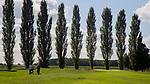 ELST - hole 14, met populieren, Golfbaan Landgoed Welderen. COPYRIGHT  KOEN SUYK