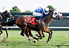 Cytherean winning at Delaware Park on 9/14/13