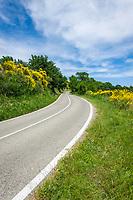 Italien, Marken, bei Fiorenzuola di Focara: auf der Strada Panoramica del San Bartolo (SP44) im Parco Naturale Monte San Bartolo, wenige Kilometer suedlich von Cattolica (Emilia-Romagna) | Italy, Marche, near Fiorenzuola di Focara: rural street Strada Panoramica del San Bartolo (SP44) at Parco Naturale Monte San Bartolo, a few kilometers south of Cattolica (Emilia-Romagna)