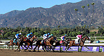 November 1, 2019: Connections for British Idiom, winner of the Breeders' Cup Juvenile Fillies on Breeders' Cup World Championship Friday at Santa Anita Park on November 1, 2019: in Arcadia, California. Bill Denver/Eclipse Sportswire/CSM