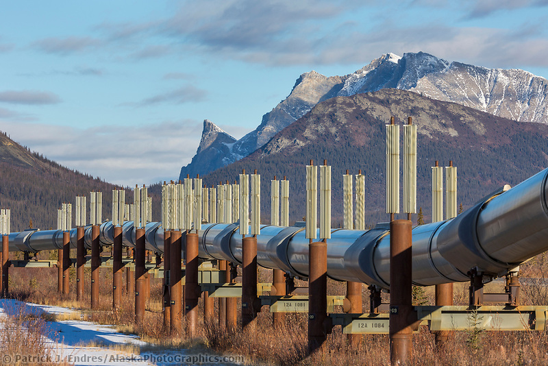 Heat fins on the trans Alaska oil pipeline help keep the ground cool to prevent permafrost from melting. Brooks Range mountains, Arctic, Alaska.