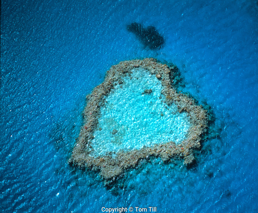 Heart Reef, Aerial View, Great Barrier Reef Marine Park, Queensland, Australia   Hook and Hardy Reef systems