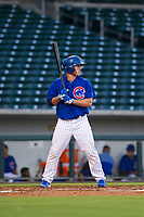 AZL Cubs first baseman Marcus Mastrobuoni (5) bats during a game against the AZL Brewers on August 6, 2017 at Sloan Park in Mesa, Arizona. AZL Cubs defeated the AZL Brewers 8-7. (Zachary Lucy/Four Seam Images)