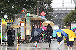 Snow falls at Yurakucho area in Tokyo, Japan on January 22, 2018. Japanese media predicted that heavy snow will hit Tokyo on the afternoon and night of January 22nd and expect it to settle affecting transport as workers head home in the evening and try to get to work on the 23rd. (Photo by Naoki Nishimura/AFLO)