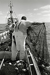 "After towing their nets between two fishing boats for several hours, long-haul fishermen climb into skiffs and begin to haul in the nets.  This process is called ""cutting out"" the nets."