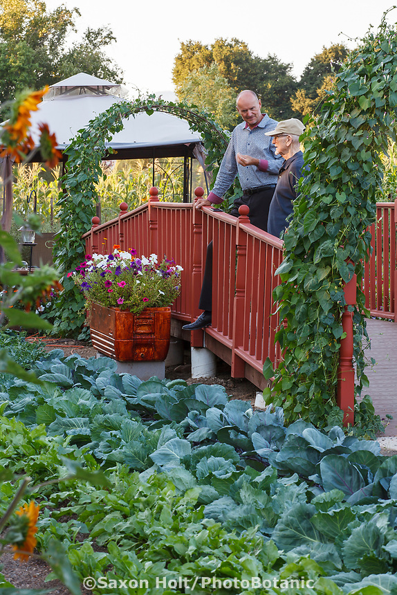 Therapeutic ramp walkway by vegetable garden with cabbages and beets at Healdsburg Senior Living Center, California