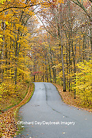 63895-15709 Road in fall Color Giant City State Park IL
